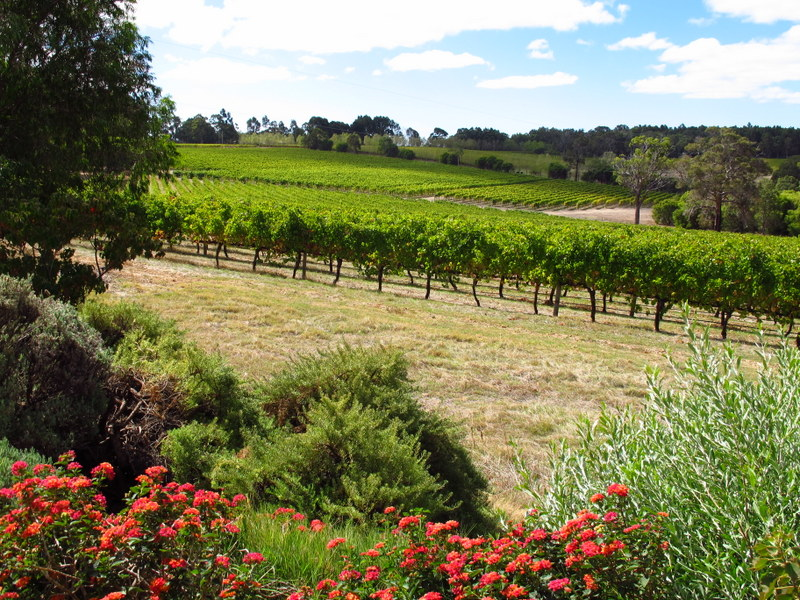 Margaret River Wine Festival