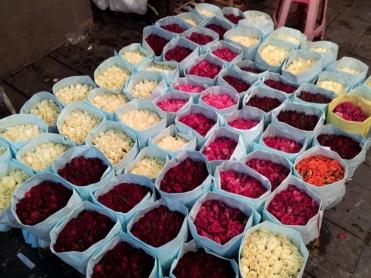 Roses in the Bangkok flower markets