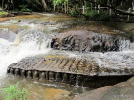 The carvings in the river.